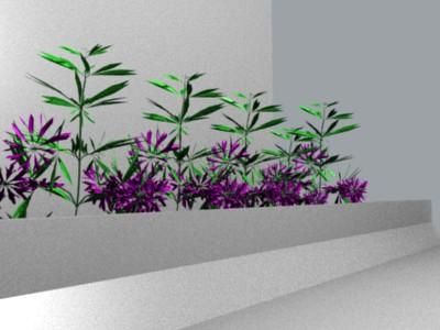 Render PlantStudio