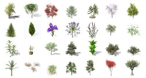 free-trees-architecture.jpg