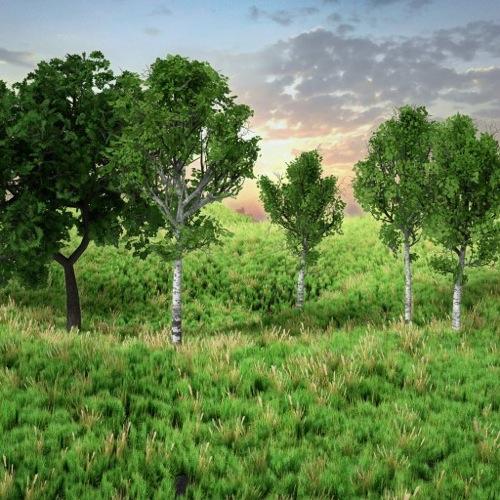 Download gratuito: Biblioteca de árvores e grama em 3d