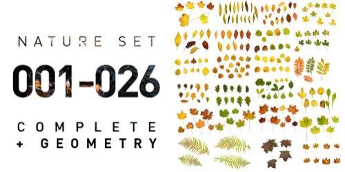 2GB em texturas gratuitas de vegetação
