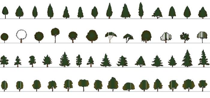 54 blocos de vegetação com cores para o AutoCAD